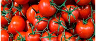 помидоры овощи