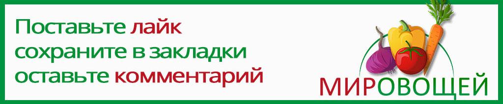 proovoschi.ru